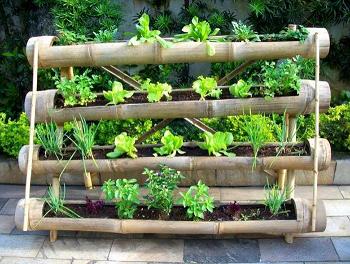 Como fazer uma horta de temperos