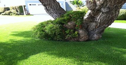 Como-instalar-grama-sintética