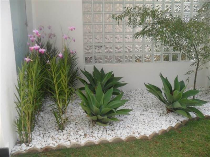 Como fazer um jardim com pouco espaço?  Decorando Casas