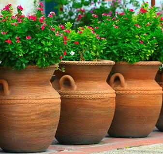 Como fazer um jardim com vasos