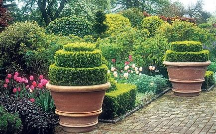 Como-fazer-um-jardim-com-vasos