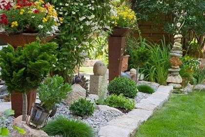 esp cies de rvores pequenas para jardim decorando casas. Black Bedroom Furniture Sets. Home Design Ideas