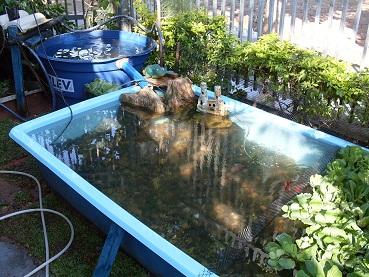 Como fazer lago para jardim passo a passo decorando casas for Como criar carpas en estanques