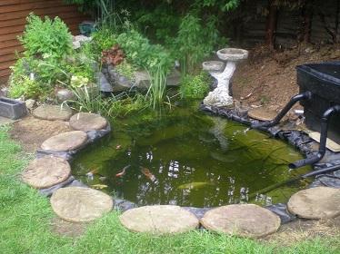Laguinho-de-jardim-pequeno