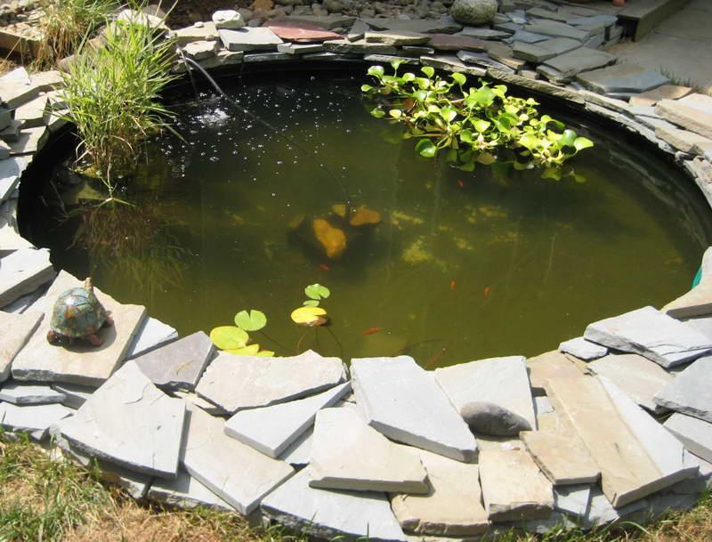 Laguinho de jardim pequeno