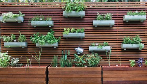 Como montar uma horta em casa