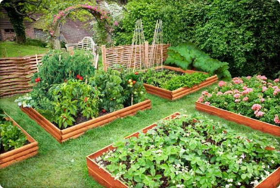 Como fazer um jardim passo a passo  Decorando Casas