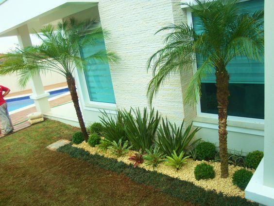 Coqueiros para jardim pequeno decorando casas for Jardin pequeno moderno