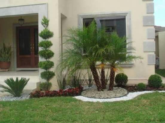 Coqueiros para jardim pequeno decorando casas - Jardines pequenos modernos ...