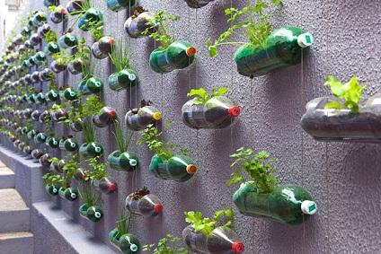 Jardim reciclado com garrafas pet