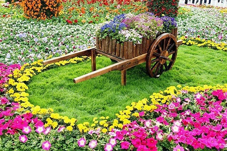 Fotos de jardins floridos