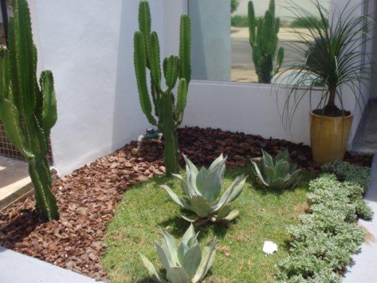 Imagens de jardins residenciais