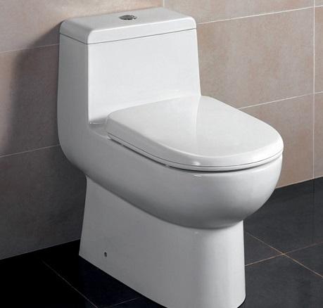 Tipos-de-assentos-sanitários