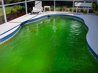 Como-limpar-piscina-verde