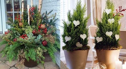 Decoração-de-natal-com-plantas-e-flores