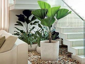 Arquivo para paisagismo e jardinagem decorando casas for Plantas artificiales para interiores
